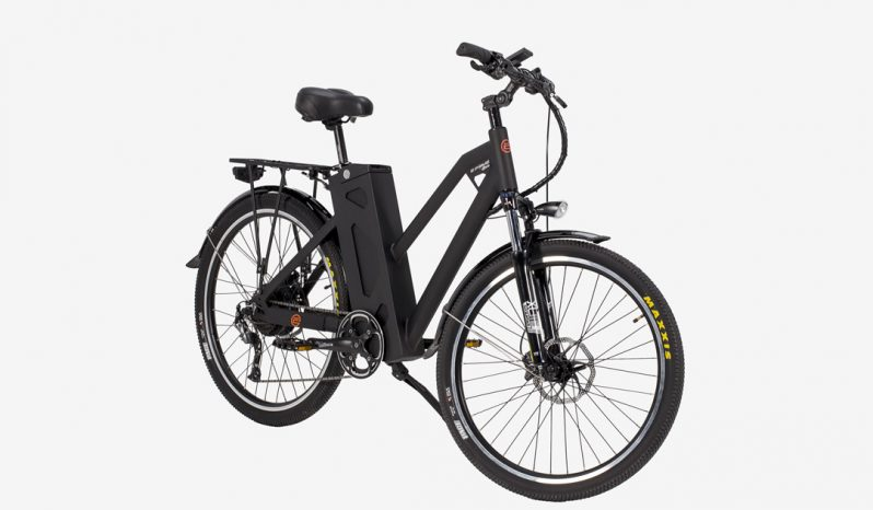 Electric bike – EFFECTA full